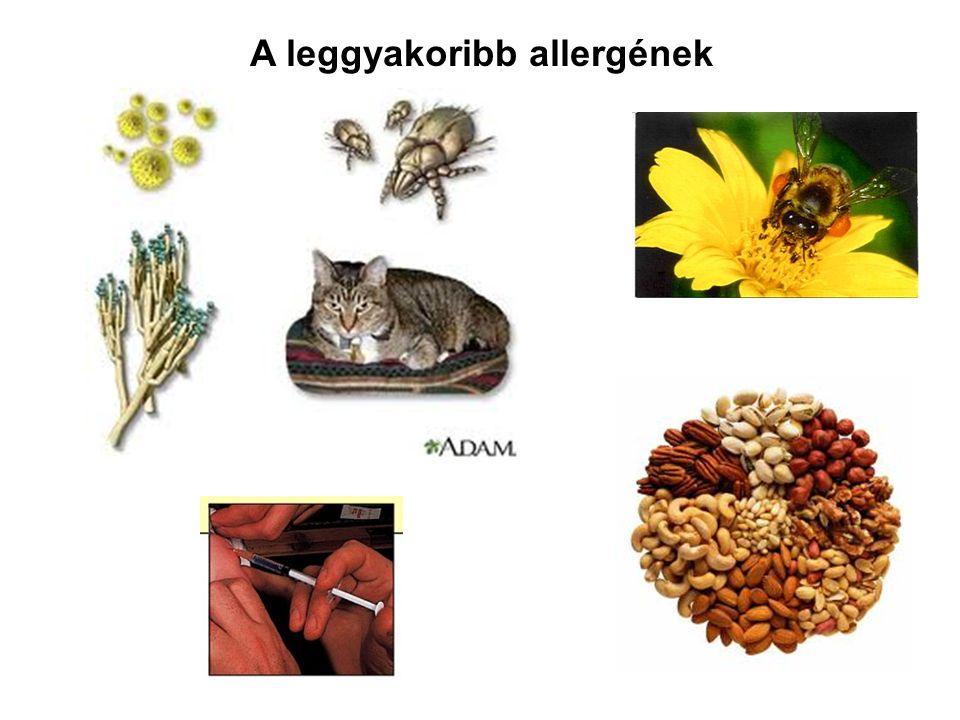 Az allergia tünetei