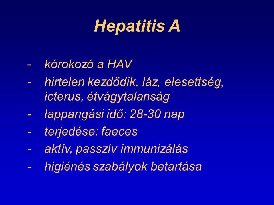 Hepatitis A -kórokozó a HAV -hirtelen kezdődik, láz, elesettség, icterus, étvágytalanság -lappangási idő: 28-30 nap -terjedése: faeces -aktív, passzív