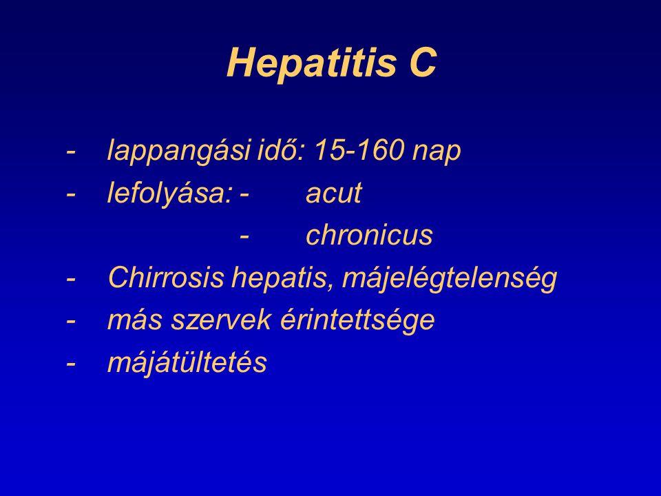 Hepatitis C -lappangási idő: 15-160 nap -lefolyása:-acut -chronicus -Chirrosis hepatis, májelégtelenség -más szervek érintettsége -májátültetés