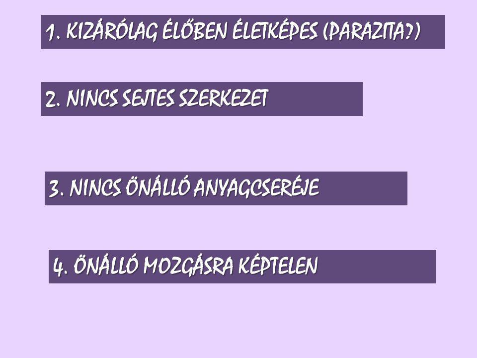 2.NINCS SEJTES SZERKEZET 3. NINCS ÖNÁLLÓ ANYAGCSERÉJE 4.