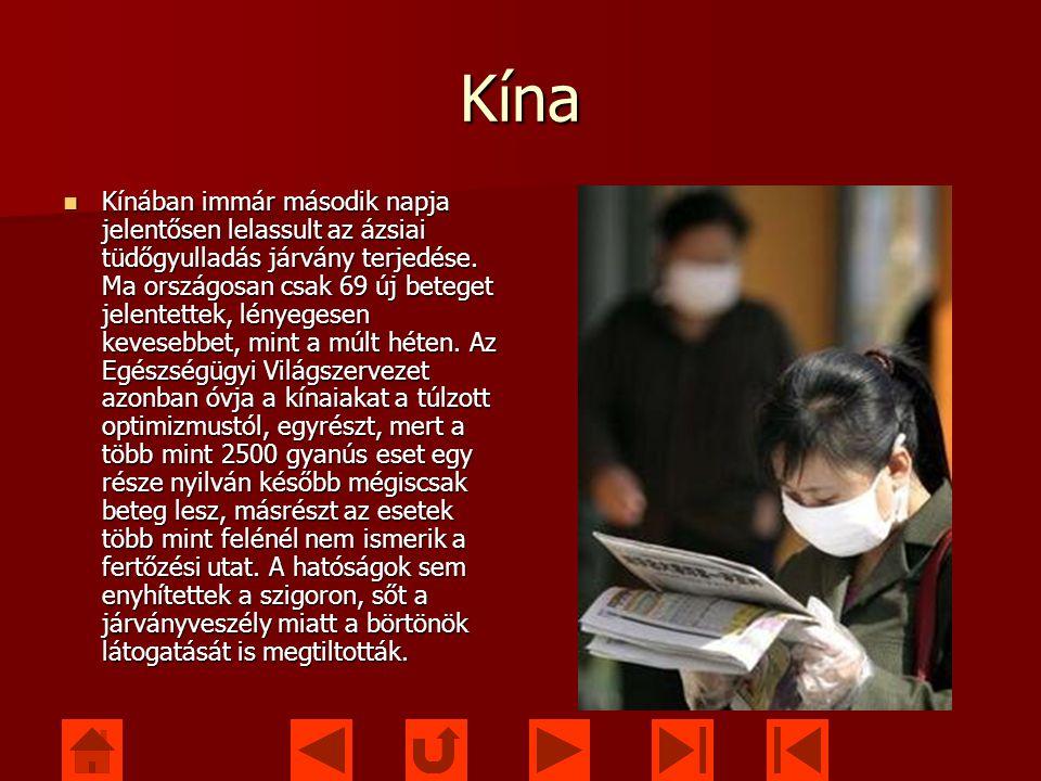 Kína Kínában immár második napja jelentősen lelassult az ázsiai tüdőgyulladás járvány terjedése.