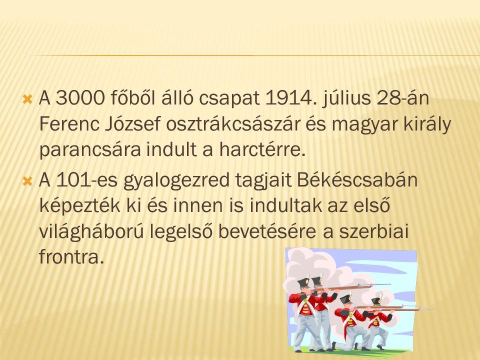 A 3000 főből álló csapat 1914.