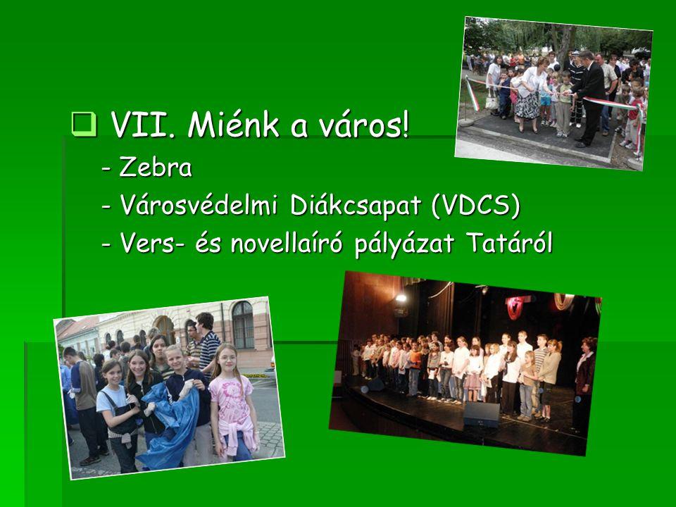  VII. Miénk a város! - Zebra - Zebra - Városvédelmi Diákcsapat (VDCS) - Városvédelmi Diákcsapat (VDCS) - Vers- és novellaíró pályázat Tatáról - Vers-
