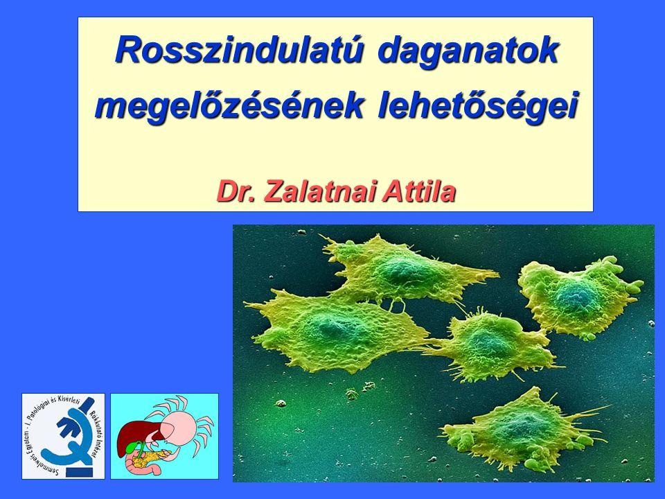 Rosszindulatú daganatok A szervezet normál sejtjeiből kialakuló, autonóm növekedésű sejtburjánzás, mely kezelés nélkül a gazdaszervezetet elpusztítja Lokális, invazív-infiltratív terjedés + áttétképződés + általános testi leromlás (cachexia) Rák.