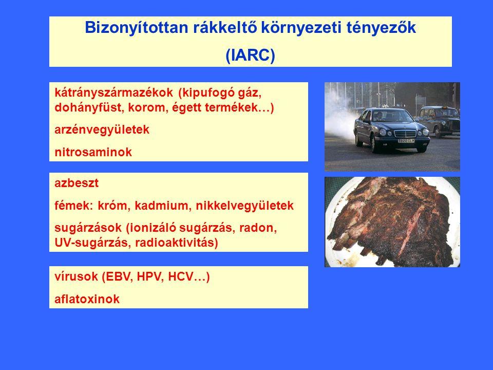 Bizonyítottan rákkeltő környezeti tényezők (IARC) kátrányszármazékok (kipufogó gáz, dohányfüst, korom, égett termékek…) arzénvegyületek nitrosaminok a