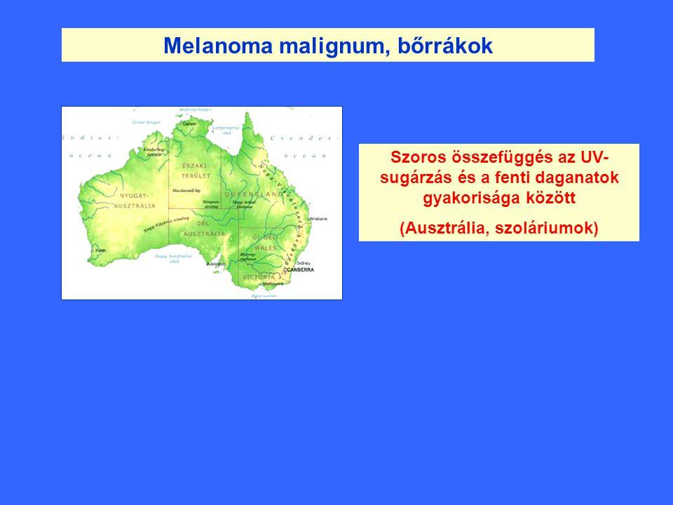 Melanoma malignum, bőrrákok Szoros összefüggés az UV- sugárzás és a fenti daganatok gyakorisága között (Ausztrália, szoláriumok)