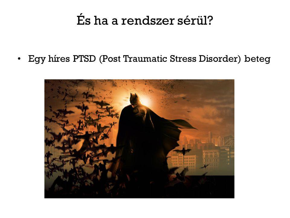 És ha a rendszer sérül? Egy híres PTSD (Post Traumatic Stress Disorder) beteg