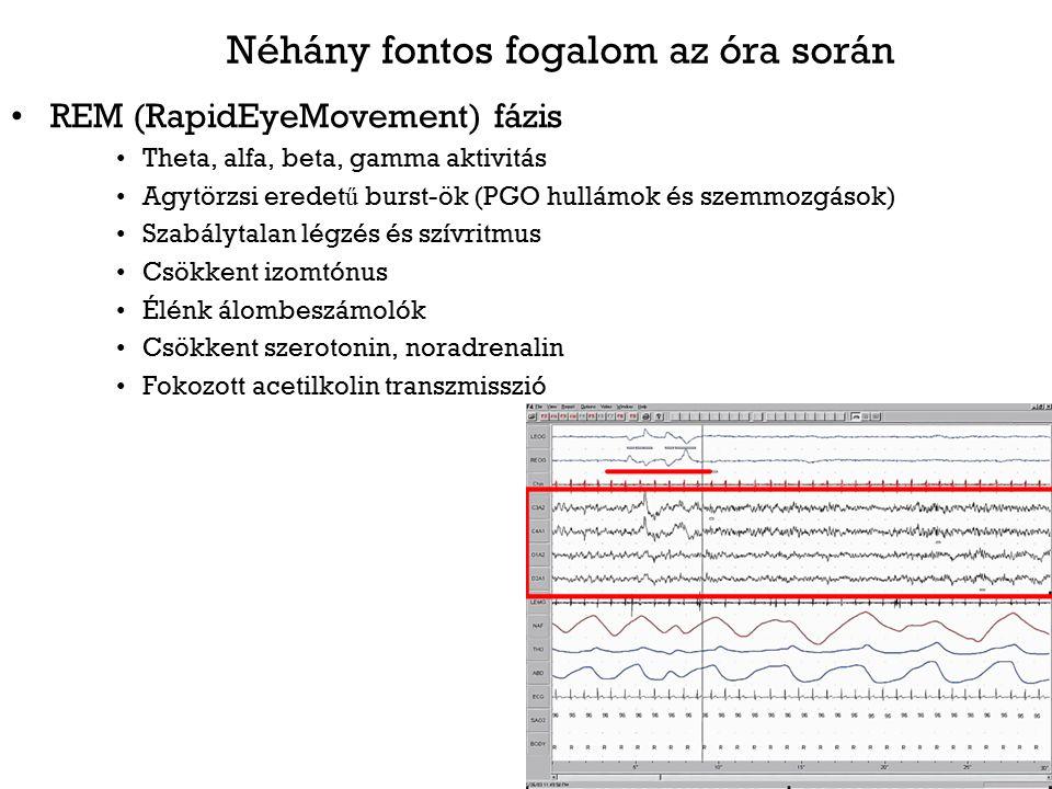 Az alvás és érzelmi szabályozás modelljei 1.