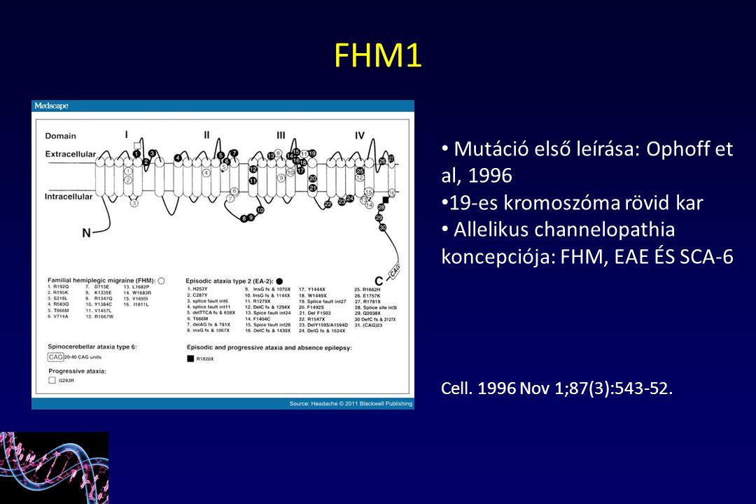 FHM1 Mutáció első leírása: Ophoff et al, 1996 19-es kromoszóma rövid kar Allelikus channelopathia koncepciója: FHM, EAE ÉS SCA-6 Cell. 1996 Nov 1;87(3