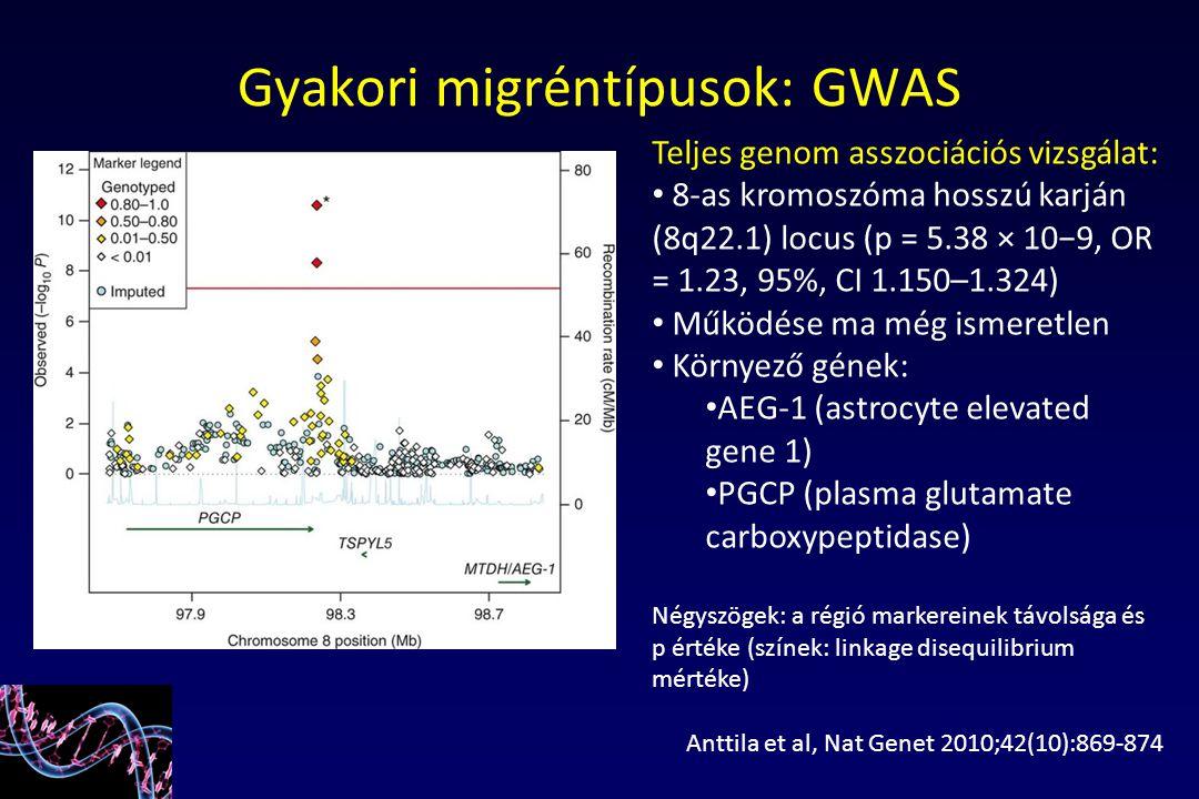 Teljes genom asszociációs vizsgálat: 8-as kromoszóma hosszú karján (8q22.1) locus (p = 5.38 × 10−9, OR = 1.23, 95%, CI 1.150–1.324) Működése ma még is