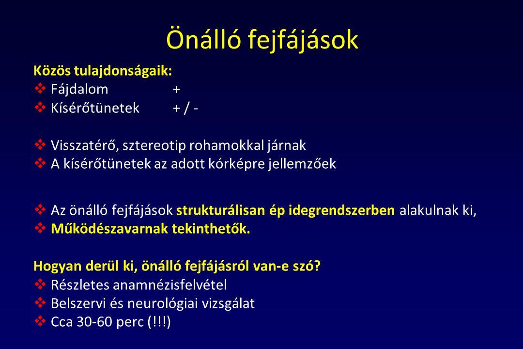 Russell MB, Olesen J.
