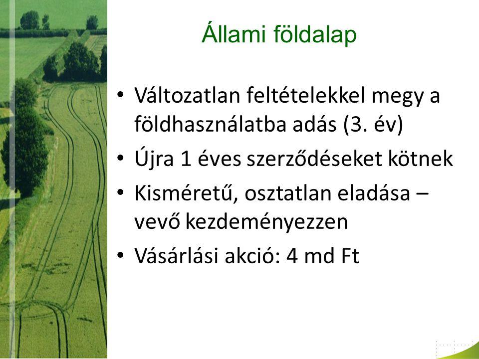 Állami földalap Változatlan feltételekkel megy a földhasználatba adás (3.