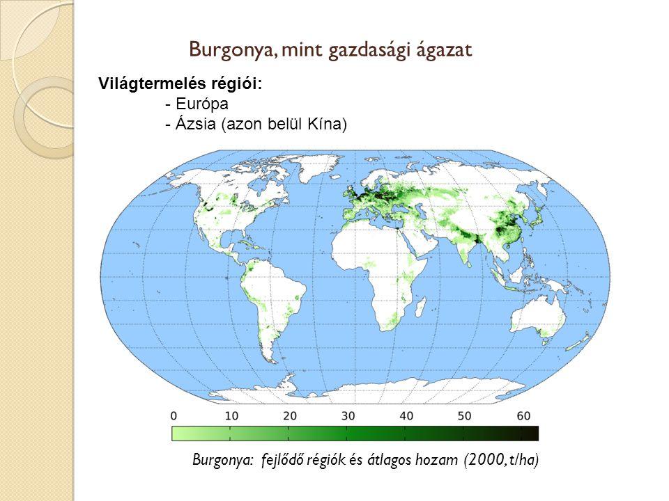 Világtermelés régiói: - Európa - Ázsia (azon belül Kína) Burgonya, mint gazdasági ágazat Burgonya: fejlődő régiók és átlagos hozam (2000, t/ha)