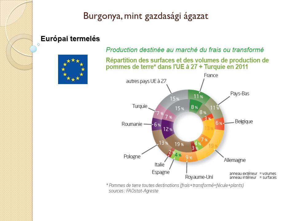 Európai termelés Burgonya, mint gazdasági ágazat