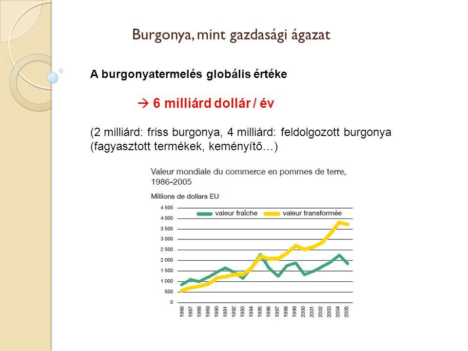 A burgonyatermelés globális értéke  6 milliárd dollár / év (2 milliárd: friss burgonya, 4 milliárd: feldolgozott burgonya (fagyasztott termékek, kemé