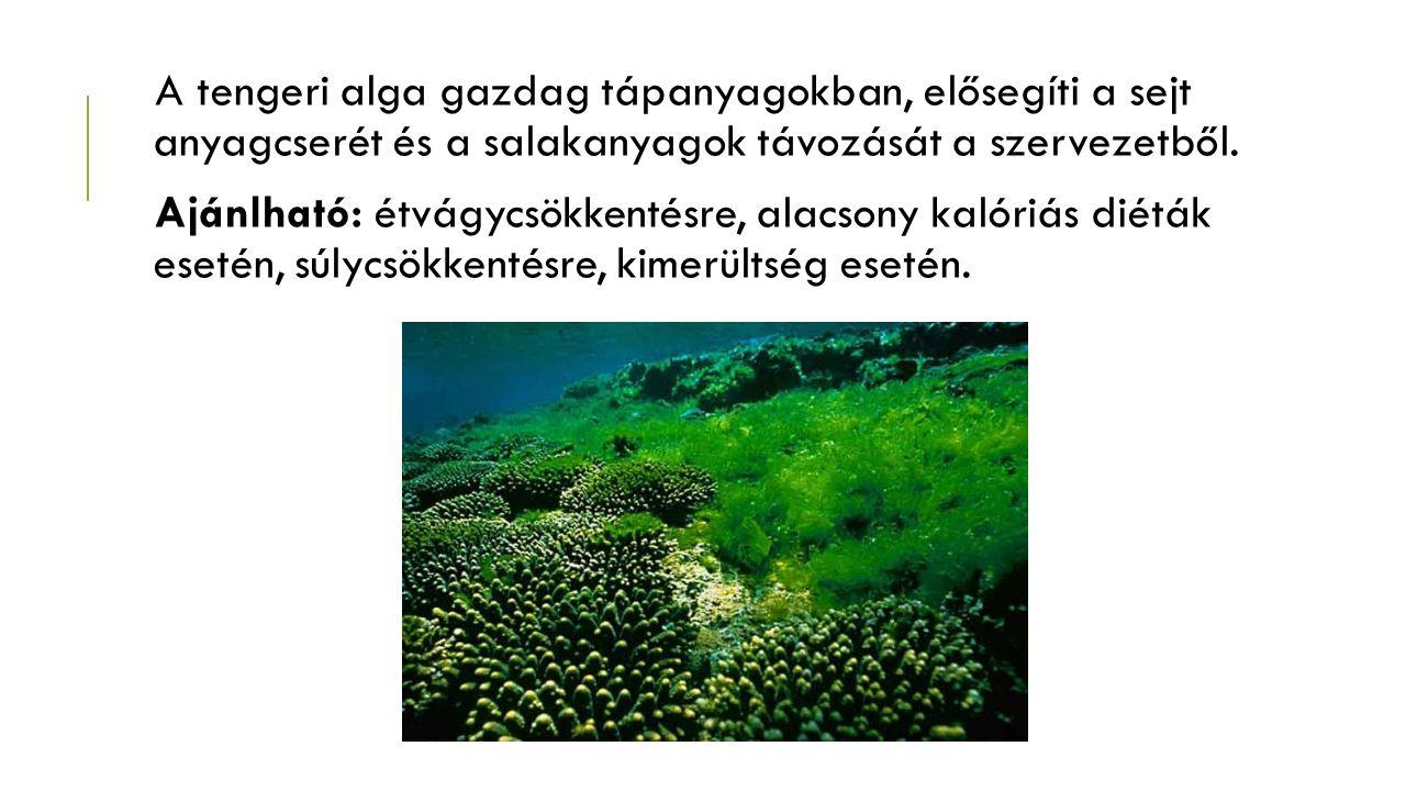 A tengeri alga gazdag tápanyagokban, elősegíti a sejt anyagcserét és a salakanyagok távozását a szervezetből. Ajánlható: étvágycsökkentésre, alacsony