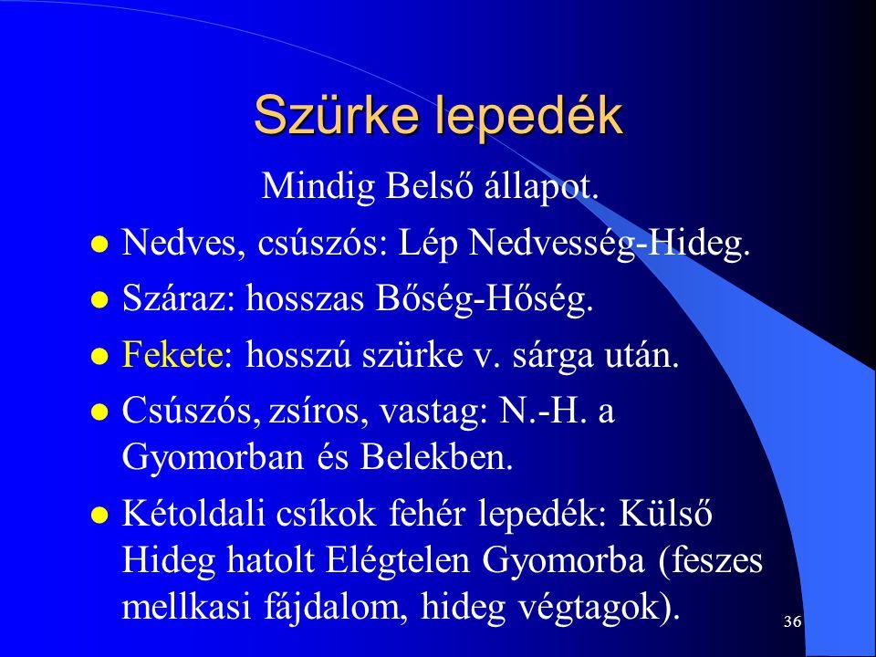 36 Szürke lepedék Mindig Belső állapot. l Nedves, csúszós: Lép Nedvesség-Hideg. l Száraz: hosszas Bőség-Hőség. l Fekete: hosszú szürke v. sárga után.