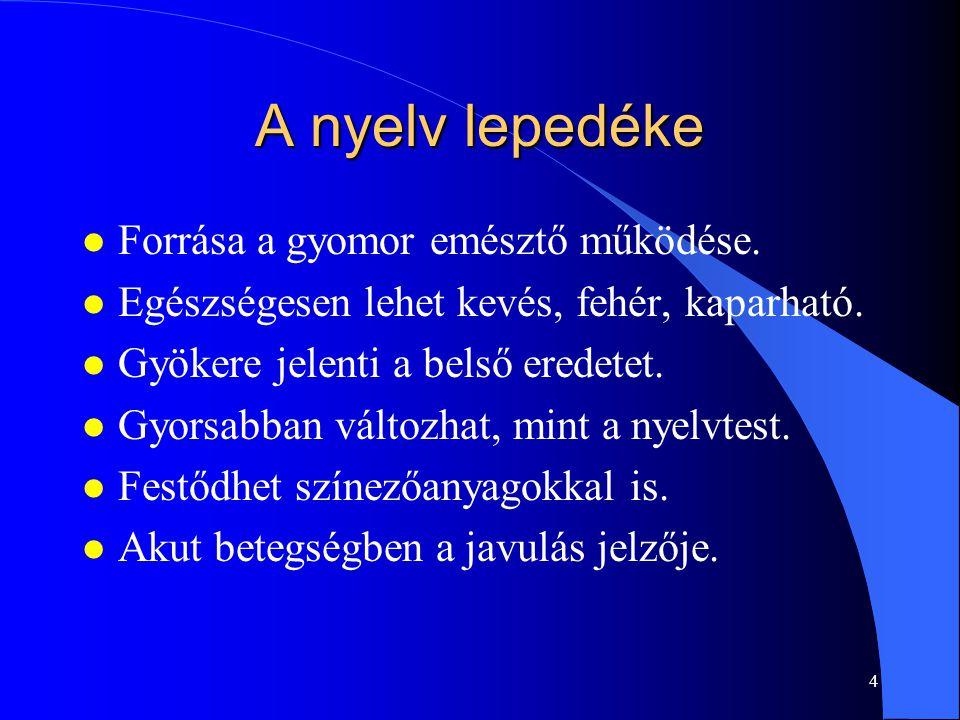 4 A nyelv lepedéke l Forrása a gyomor emésztő működése. l Egészségesen lehet kevés, fehér, kaparható. l Gyökere jelenti a belső eredetet. l Gyorsabban