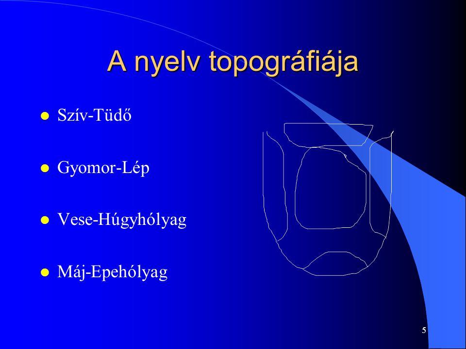 5 A nyelv topográfiája l Szív-Tüdő l Gyomor-Lép l Vese-Húgyhólyag l Máj-Epehólyag