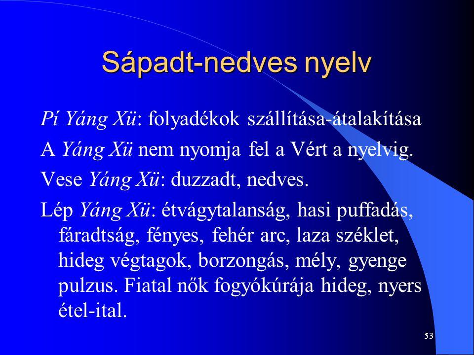 53 Sápadt-nedves nyelv Pí Yáng Xü: folyadékok szállítása-átalakítása A Yáng Xü nem nyomja fel a Vért a nyelvig. Vese Yáng Xü: duzzadt, nedves. Lép Yán