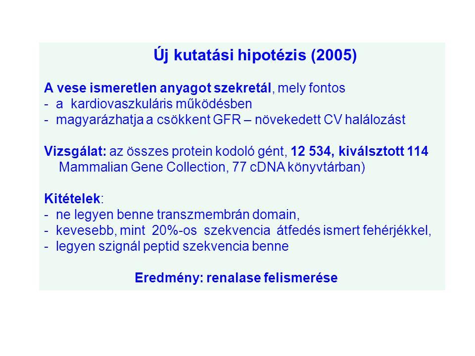Új kutatási hipotézis (2005) A vese ismeretlen anyagot szekretál, mely fontos - a kardiovaszkuláris működésben - magyarázhatja a csökkent GFR – növeke
