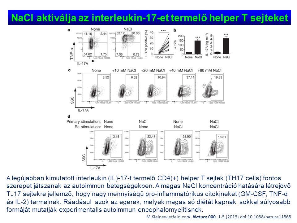 NaCl aktiválja az interleukin-17-et termelő helper T sejteket M Kleinewietfeld et al. Nature 000, 1-5 (2013) doi:10.1038/nature11868 A legújabban kimu