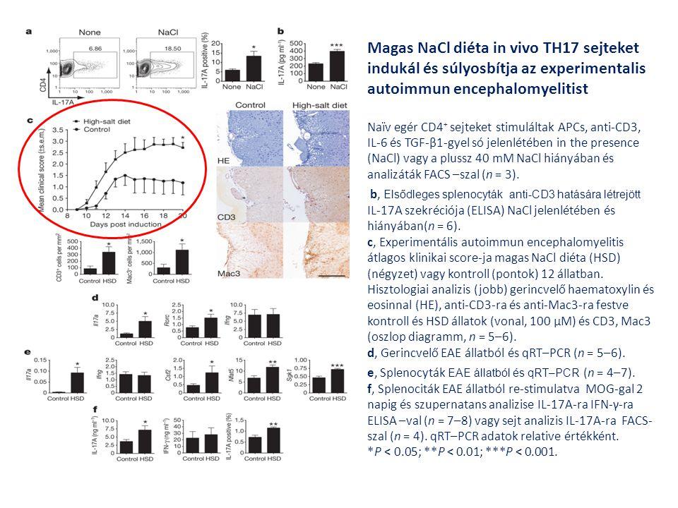 Magas NaCl diéta in vivo TH17 sejteket indukál és súlyosbítja az experimentalis autoimmun encephalomyelitist Naïv egér CD4 + sejteket stimuláltak APCs
