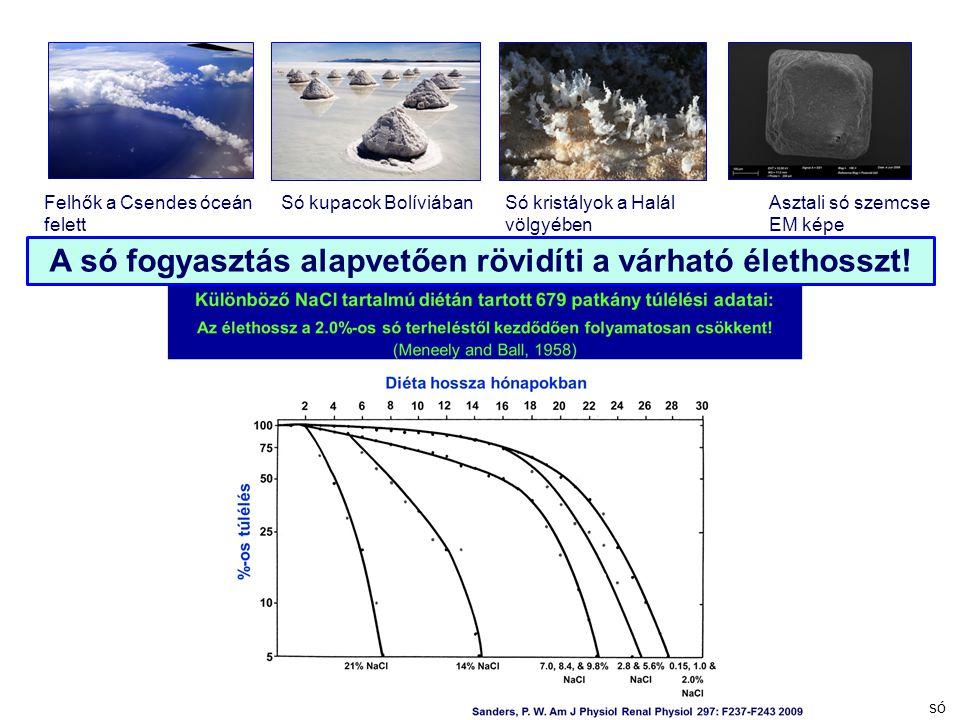 Felhők a Csendes óceán felett Só kupacok BolíviábanSó kristályok a Halál völgyében Asztali só szemcse EM képe A só fogyasztás alapvetően rövidíti a vá