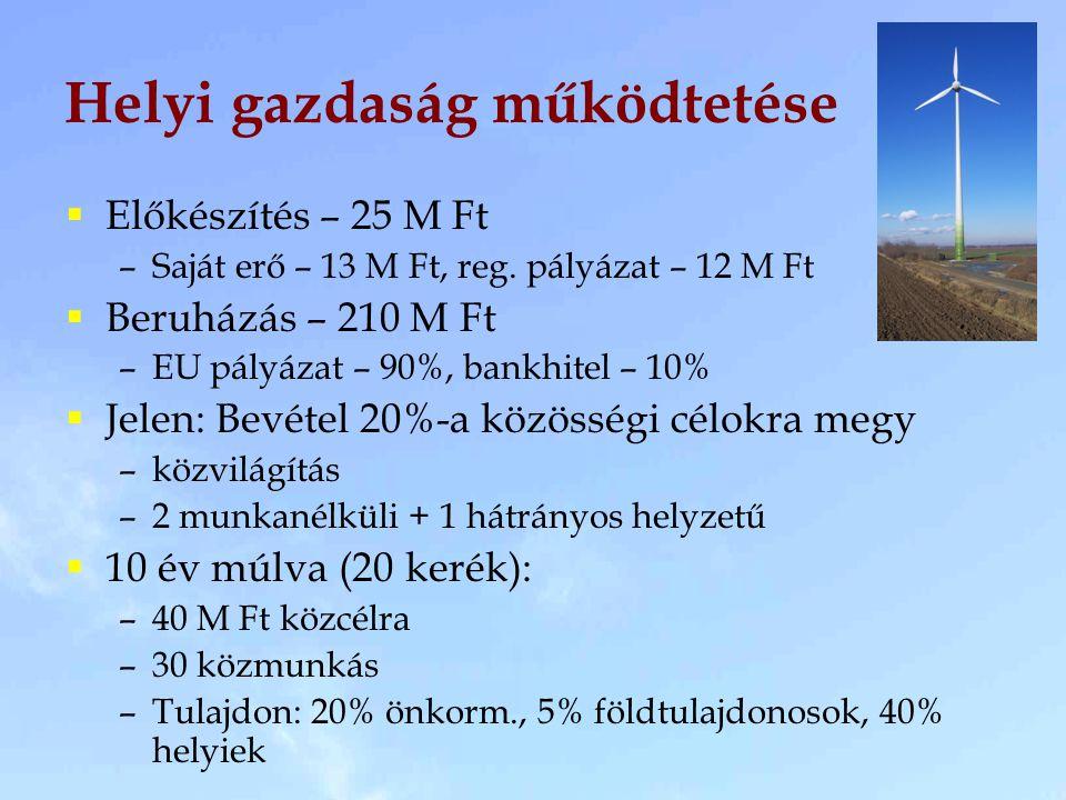 Helyi gazdaság működtetése  Előkészítés – 25 M Ft –Saját erő – 13 M Ft, reg.
