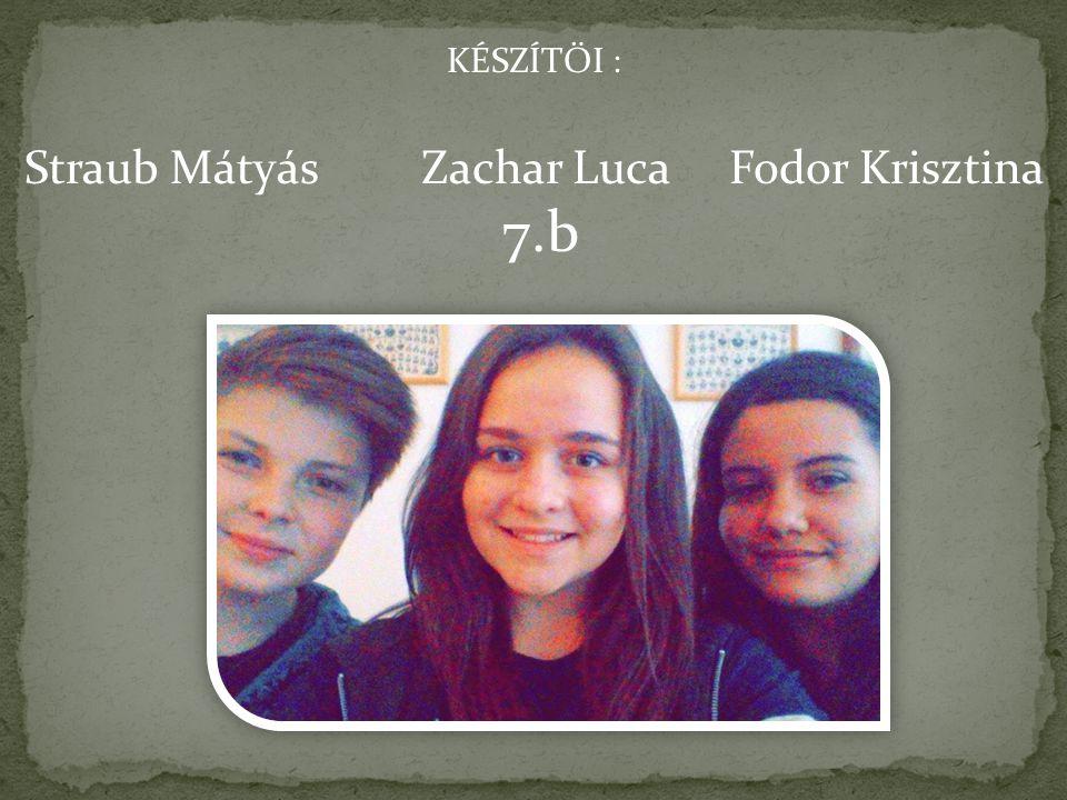 KÉSZÍTŐI : Straub Mátyás Zachar Luca Fodor Krisztina 7.b