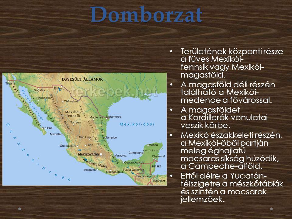 Domborzat Területének központi része a füves Mexikói- fennsík vagy Mexikói- magasföld.