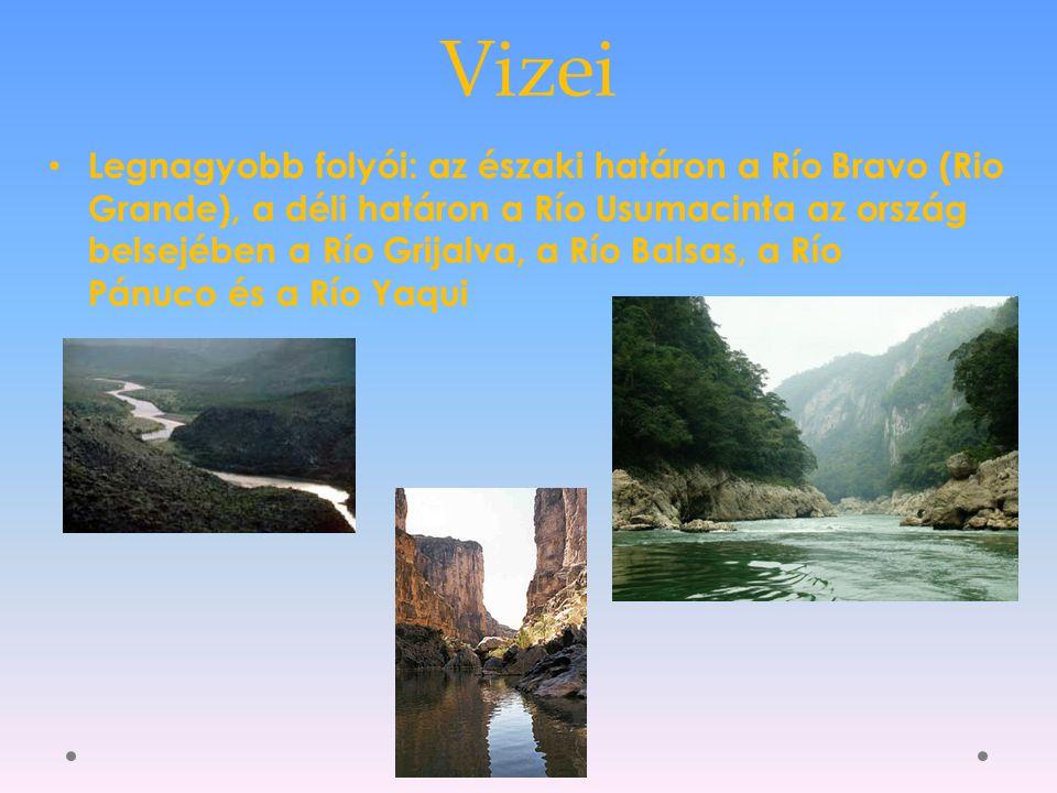 Vizei Legnagyobb folyói: az északi határon a Río Bravo (Rio Grande), a déli határon a Río Usumacinta az ország belsejében a Río Grijalva, a Río Balsas, a Río Pánuco és a Río Yaqui