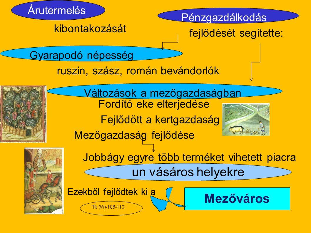 un vásáros helyekre Mezőváros kibontakozását Árutermelés Pénzgazdálkodás fejlődését segítette: ruszin, szász, román bevándorlók Fordító eke elterjedés