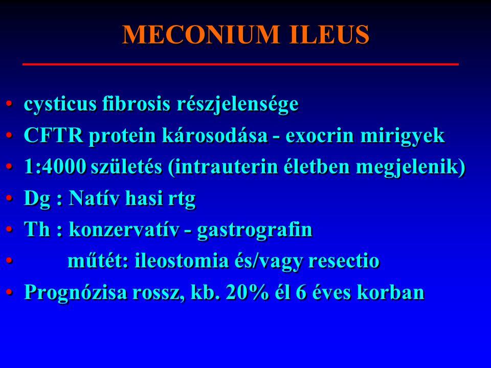 cysticus fibrosis részjelensége CFTR protein károsodása - exocrin mirigyek 1:4000 születés (intrauterin életben megjelenik) Dg : Natív hasi rtg Th : konzervatív - gastrografin műtét: ileostomia és/vagy resectio Prognózisa rossz, kb.