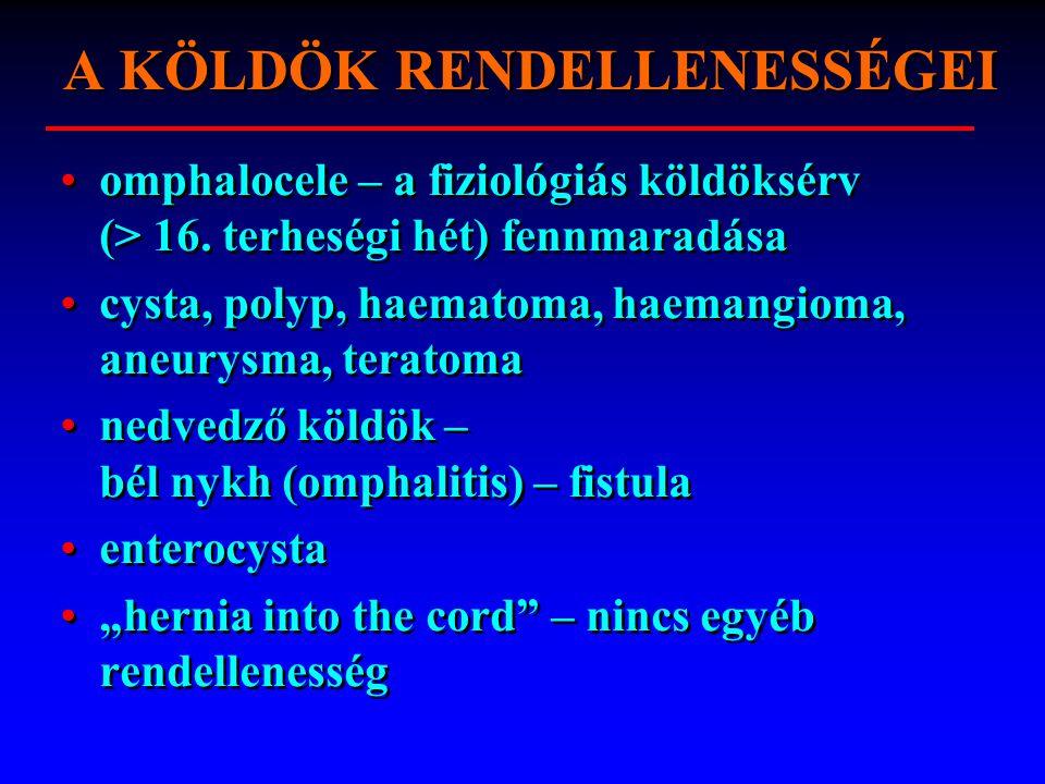 A KÖLDÖK RENDELLENESSÉGEI omphalocele – a fiziológiás köldöksérv (> 16.