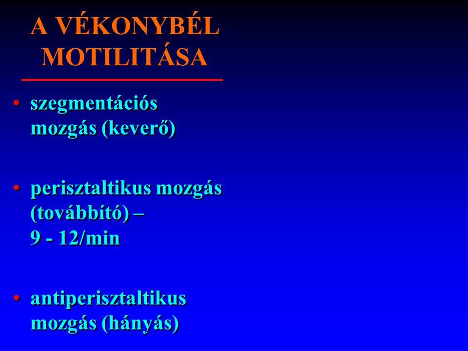 A VÉKONYBÉL MOTILITÁSA szegmentációs mozgás (keverő) perisztaltikus mozgás (továbbító) – 9 - 12/min antiperisztaltikus mozgás (hányás) szegmentációs m