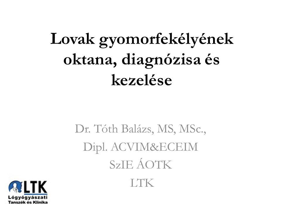 Előadásvázlat Gyomorfekély nevezéktana és oktana Diagnosztika Kezelés és menedzsment