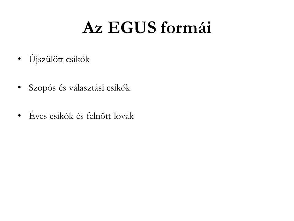 Az EGUS formái Újszülött csikók Szopós és választási csikók Éves csikók és felnőtt lovak