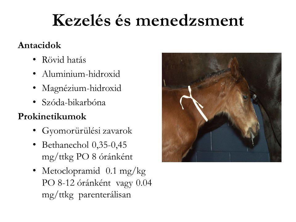 Kezelés és menedzsment Antacidok Rövid hatás Aluminium-hidroxid Magnézium-hidroxid Szóda-bikarbóna Prokinetikumok Gyomorürülési zavarok Bethanechol 0,35-0,45 mg/ttkg PO 8 óránként Metoclopramid 0.1 mg/kg PO 8-12 óránként vagy 0.04 mg/ttkg parenterálisan