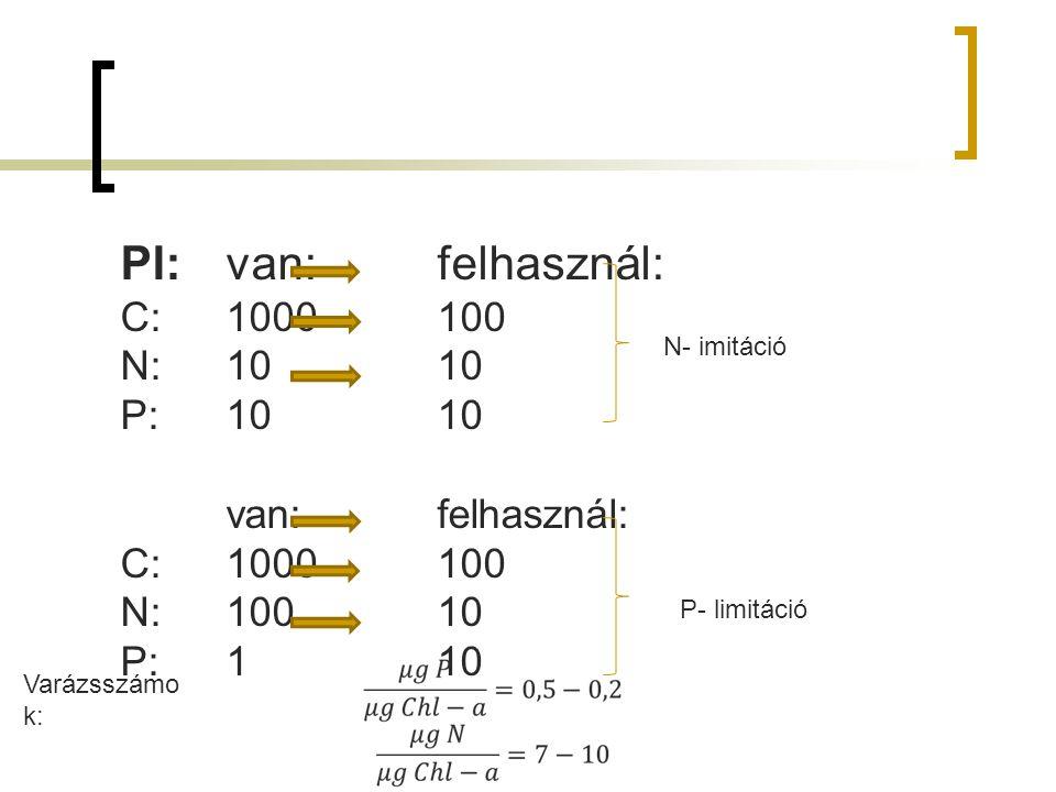 Pl: van:felhasznál: C:1000100 N:1010 P:1010 van:felhasznál: C:1000100 N:10010 P:110 N- imitáció P- limitáció Varázsszámo k: