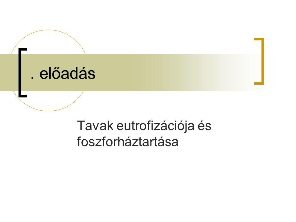 Zöldalga, kovamosza t Kékalga (hipertróf tó) 510 algaszin t hónap N- limitáció az édesvizekben csak átmenetileg.