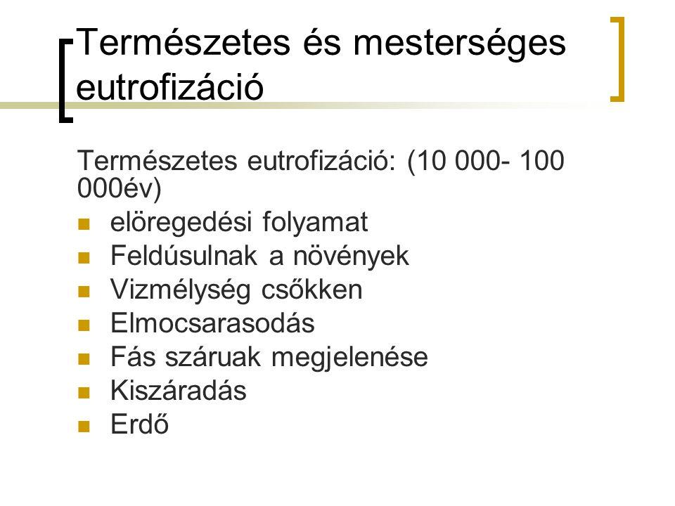 Természetes és mesterséges eutrofizáció Természetes eutrofizáció: (10 000- 100 000év) elöregedési folyamat Feldúsulnak a növények Vizmélység csőkken Elmocsarasodás Fás száruak megjelenése Kiszáradás Erdő