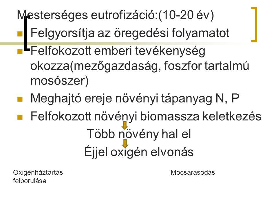 Tápeleme k C N P K Termelő szervezete k Lebontók Szervesből szervetlen (mineralizáci ó) Fogyasztó k