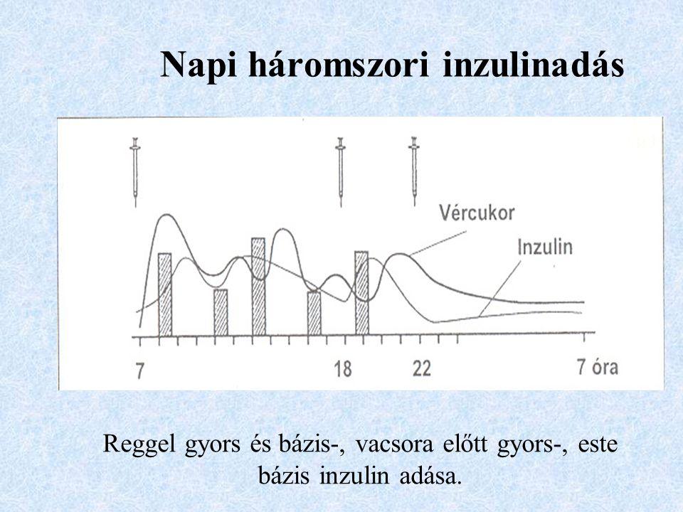 Napi háromszori inzulinadás Reggel gyors és bázis-, vacsora előtt gyors-, este bázis inzulin adása.