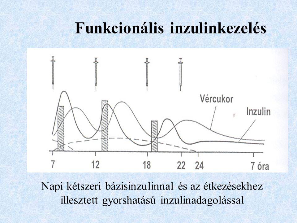 Funkcionális inzulinkezelés Napi kétszeri bázisinzulinnal és az étkezésekhez illesztett gyorshatású inzulinadagolással