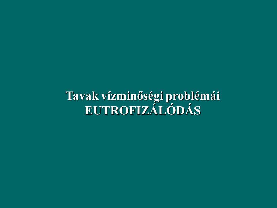 A Vollenweider-féle statisztikus formula (1980) Sekély tavakra: Tartózkodási idő (év)
