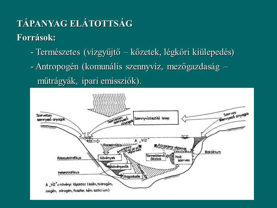 TÁPANYAG ELÁTOTTSÁG Források: - Természetes (vízgyűjtő – kőzetek, légköri kiülepedés) - Antropogén (komunális szennyvíz, mezőgazdaság – műtrágyák, ipari emissziók).