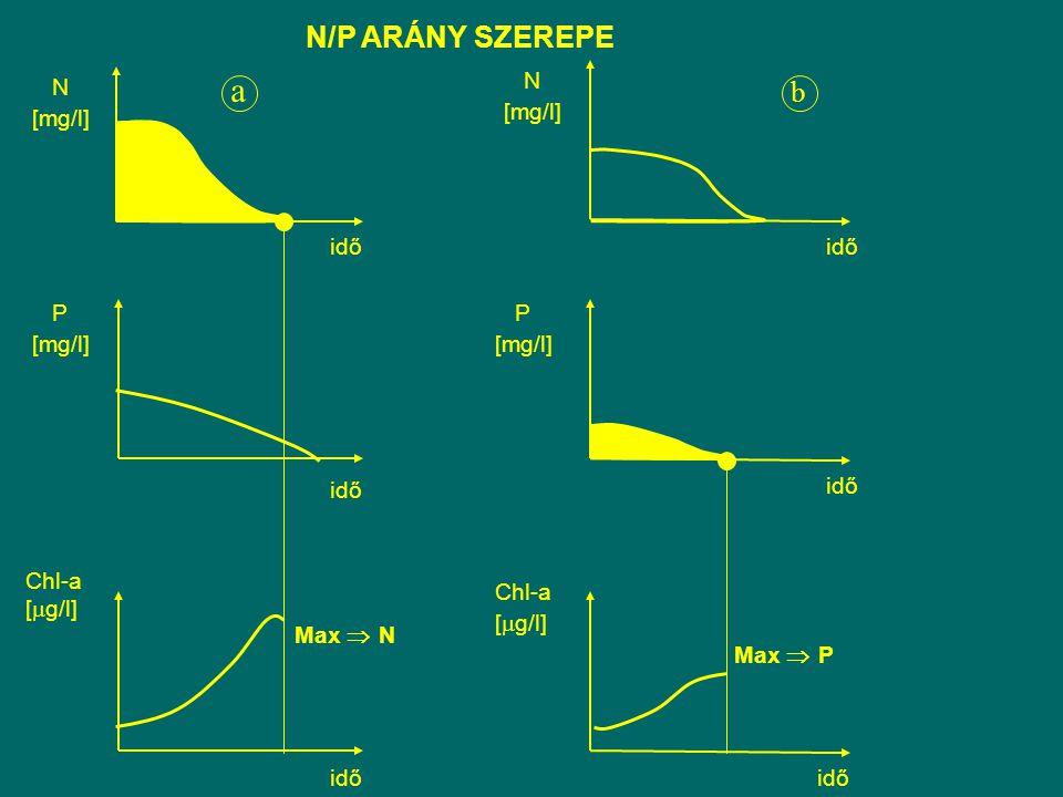 N/P ARÁNY SZEREPE Max  N Max  P N [mg/l] P [mg/l] idő b Chl-a [  g/l] idő Chl-a [  g/l] idő P [mg/l] idő a N [mg/l] idő