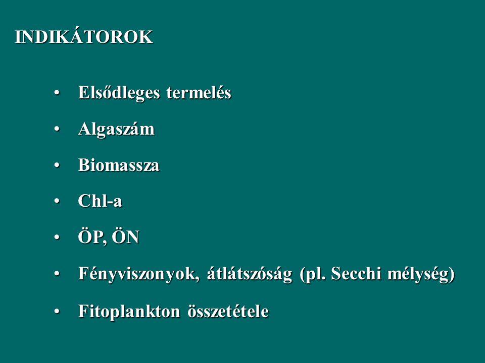 INDIKÁTOROK INDIKÁTOROK Elsődleges termelésElsődleges termelés AlgaszámAlgaszám BiomasszaBiomassza Chl-aChl-a ÖP, ÖNÖP, ÖN Fényviszonyok, átlátszóság (pl.