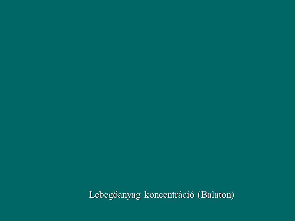 Lebegőanyag koncentráció (Balaton)